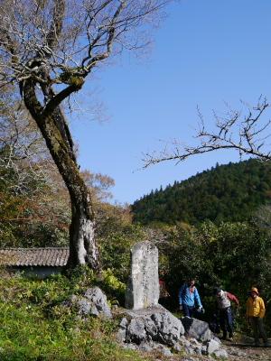 歯長峠(480m)